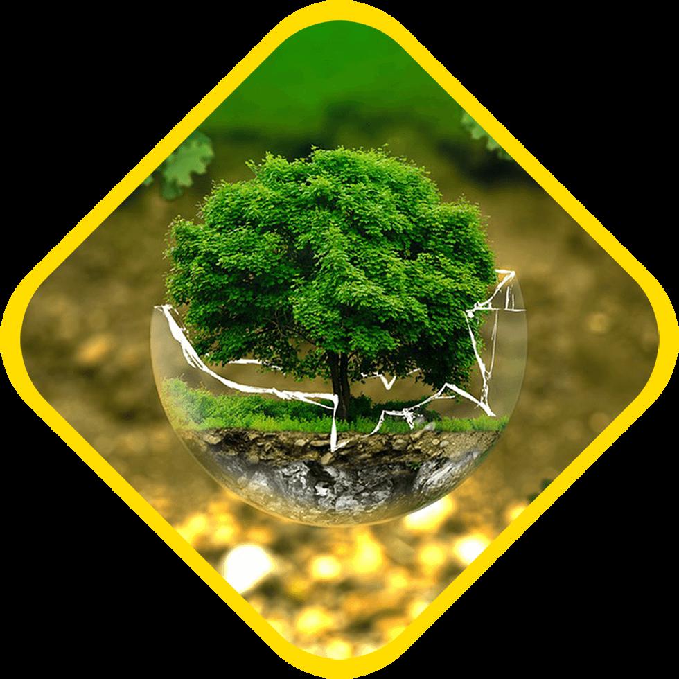 Termovalseriana rispetta l'ambiente e le persone